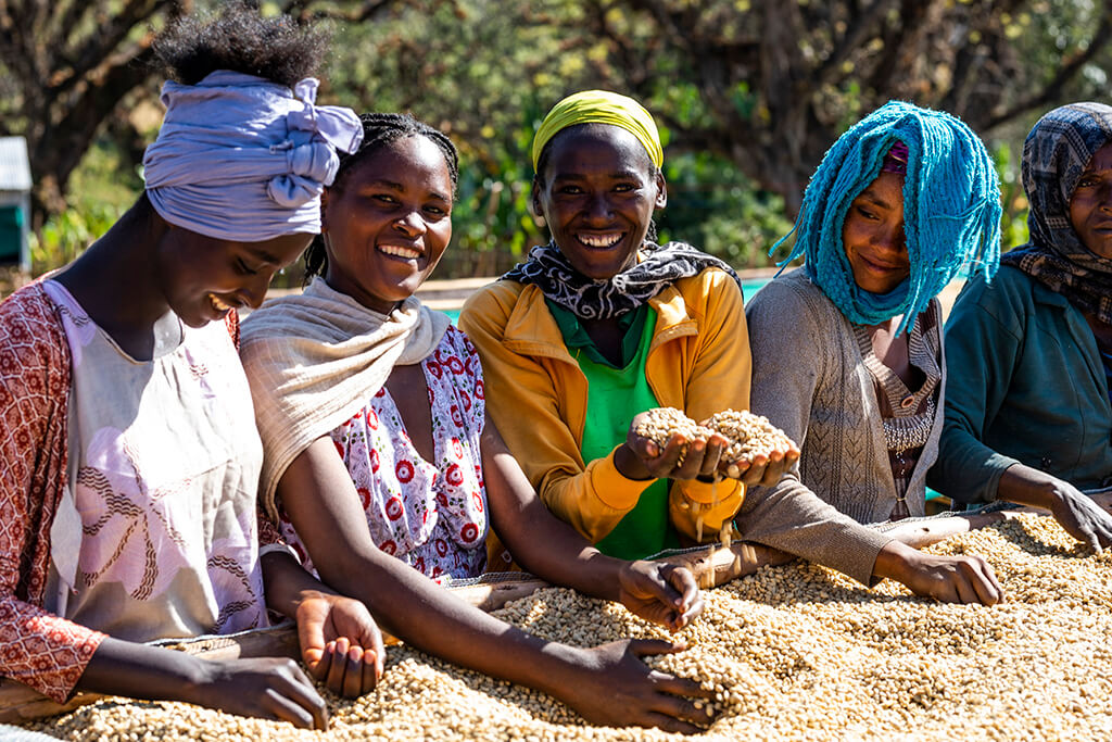 Ethiopia Kutigenge: Κι όμως η συγκίνηση έχει άρωμα Microfarm